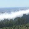 ニュース画像 2枚目:空中消火活動を行う様子、画像はイスラエルで