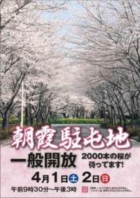 ニュース画像 1枚目:朝霞駐屯地 桜まつり