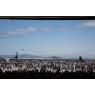 ニュース画像 2枚目:21万人が集まった岩国基地、画像はウィスキーパパの飛行