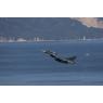 ニュース画像 15枚目:空自築城基地所属のF-2戦闘機