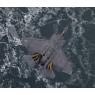 ニュース画像 5枚目:「Ice Cold」氷海上で試験飛行するF-35C