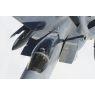 ニュース画像 3枚目:嘉手納基地18WGのF-15C