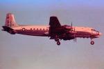 apphgさんが、厚木飛行場で撮影したアメリカ海軍 DC-6Bの航空フォト(写真)