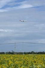 wing_oitさんが、大分空港で撮影した日本航空 MD-90-30の航空フォト(写真)
