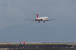 A R Iさんが、大分空港で撮影した日本航空 MD-90-30の航空フォト(写真)