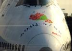 チャーリーマイクさんが、羽田空港で撮影した全日空 747SR-81の航空フォト(写真)
