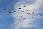 apphgさんが、厚木飛行場で撮影したアメリカ海軍 F-14Aの航空フォト(写真)