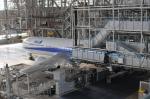 Oceanbuleさんが、羽田空港で撮影した全日空 767-381の航空フォト(写真)