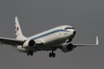 肉食獣さんが、台北松山空港で撮影した中華民国空軍 737-8ARの航空フォト(写真)