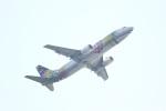 ぽてたん(改)さんが、羽田空港で撮影したスカイネットアジア航空 737-43Qの航空フォト(写真)