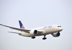 tomo@Germanyさんが、成田国際空港で撮影したユナイテッド航空 787-822の航空フォト(写真)