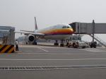 レンタくんさんが、羽田空港で撮影した日本エアシステム A300B4-203の航空フォト(写真)