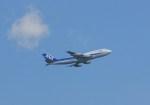 ギ―ピロさんが、羽田空港で撮影した全日空 747-481(D)の航空フォト(写真)