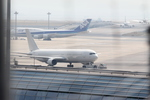 787 yrさんが、羽田空港で撮影した日本航空 767-346の航空フォト(写真)