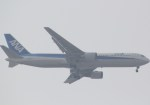 takikoki50000さんが、伊丹空港で撮影した全日空 767-381の航空フォト(写真)