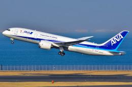 Atsugi R4さんが、羽田空港で撮影した全日空 787-8 Dreamlinerの航空フォト(写真)