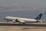 肉食獣さんが、羽田空港で撮影したサウジアラビア王国政府 A340-213Xの航空フォト(写真)