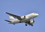 tomo@Germanyさんが、羽田空港で撮影したヤーリアン・ビジネスジェット A318-112 CJ Eliteの航空フォト(写真)