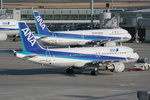 Enuarlさんが、羽田空港で撮影した全日空 A320-211の航空フォト(写真)