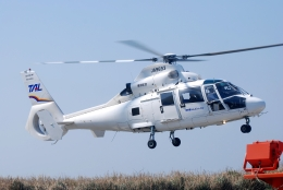 へりさんが、利島ヘリポートで撮影した東邦航空 SA365N1 Dauphin 2の航空フォト(写真)