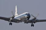 REDCRAFTさんが、入間飛行場で撮影した航空自衛隊 YS-11A-402Pの航空フォト(写真)