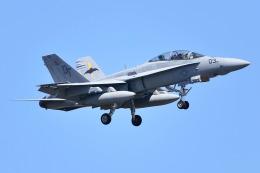 Atsugi R4さんが、厚木飛行場で撮影したアメリカ海兵隊 F/A-18D Hornetの航空フォト(写真)