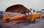 チャーリーマイクさんが、ホンダエアポートで撮影した日本個人所有 7AC Championの航空フォト(写真)