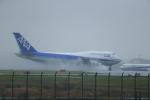 キクさんが、羽田空港で撮影した全日空 747-481(D)の航空フォト(写真)
