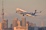 REDCRAFTさんが、羽田空港で撮影した全日空 737-881の航空フォト(写真)