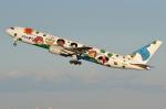 REDCRAFTさんが、羽田空港で撮影した全日空 767-381の航空フォト(写真)