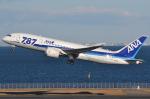 REDCRAFTさんが、羽田空港で撮影した全日空 787-881の航空フォト(写真)