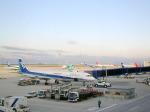 まいけるさんが、中部国際空港で撮影した全日空 A321-131の航空フォト(写真)