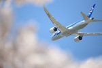 furuさんが、成田国際空港で撮影した全日空 787-8 Dreamlinerの航空フォト(写真)
