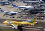 なごやんさんが、羽田空港で撮影した全日空 747-481(D)の航空フォト(写真)