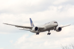 こだしさんが、成田国際空港で撮影したユナイテッド航空 787-8 Dreamlinerの航空フォト(写真)