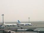 toyokoさんが、羽田空港で撮影した日本エアシステム A300B2K-3Cの航空フォト(写真)