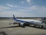 シフォンさんが、福岡空港で撮影した全日空 777-281/ERの航空フォト(写真)