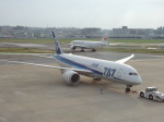シフォンさんが、福岡空港で撮影した全日空 787-881の航空フォト(写真)