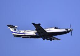 tomo@Germanyさんが、羽田空港で撮影したPilatusの航空フォト(写真)