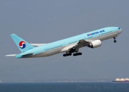 DEE JAYさんが、中部国際空港で撮影した大韓航空 777-2B5/ERの航空フォト(写真)