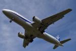 もほりんさんが、伊丹空港で撮影した全日空 A320-211の航空フォト(写真)