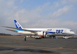 tomo@Germanyさんが、熊本空港で撮影した全日空 787-881の航空フォト(写真)