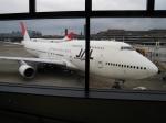 Mihaさんが、成田国際空港で撮影した日本航空 747-446の航空フォト(写真)
