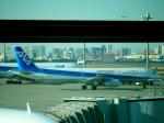 ころちゃんさんが、羽田空港で撮影した全日空 A321-131の航空フォト(写真)