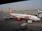 ライトレールさんが、アントニオ・カルロス・ジョビン国際空港で撮影したゴル航空 737-8EH/SFPの航空フォト(写真)