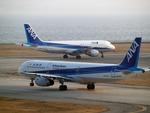 たぁさんが、関西国際空港で撮影した全日空 A321-131の航空フォト(写真)