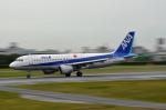 ktaroさんが、伊丹空港で撮影した全日空 A320-211の航空フォト(写真)