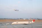 Oceanbuleさんが、鹿児島空港で撮影した日本航空 MD-81 (DC-9-81)の航空フォト(写真)