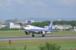 アボさんが、伊丹空港で撮影した全日空 A320-211の航空フォト(写真)