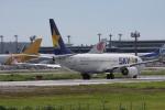 サイパンだ!さんが、成田国際空港で撮影したスカイマーク 737-8HXの航空フォト(写真)
